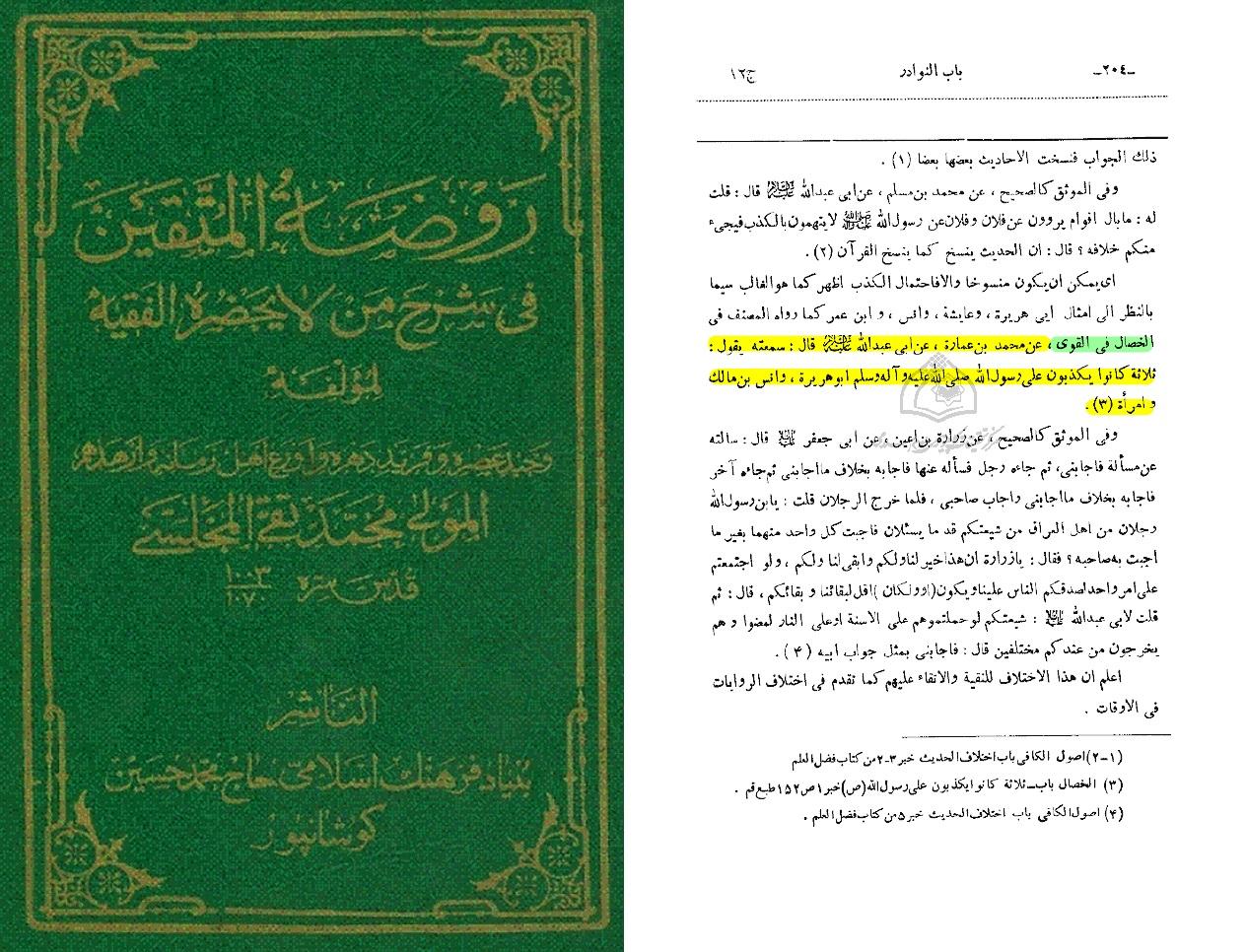 sharh-ul-faqih-band-12-seite-204